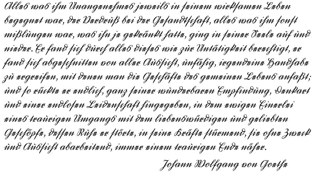 typemanufactur ··· ··· typemanufactur ···